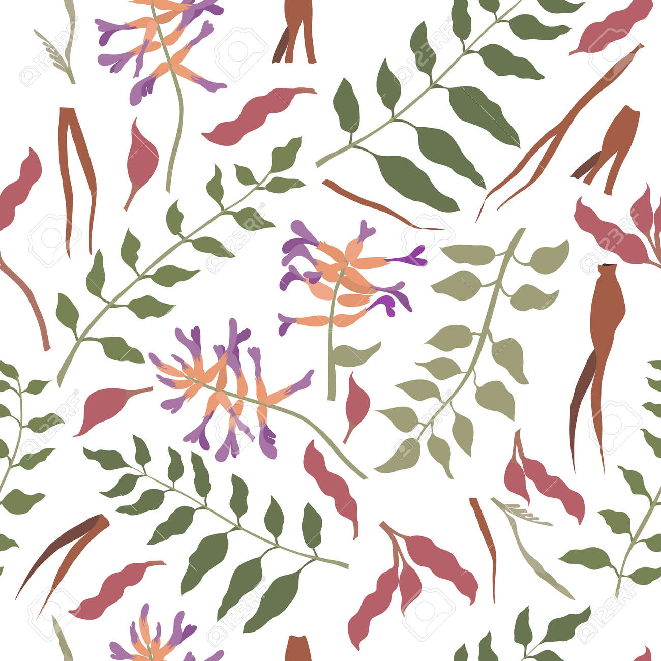 Seamless Pattern with Chinese liquorice colored Parts. Leaves, Flower Heads, Roots and Beans Placed Chaotically on White Backdrop. Ideal for Magazine, Recipe book, Poster, Card, Menu cover etc. - 166149137