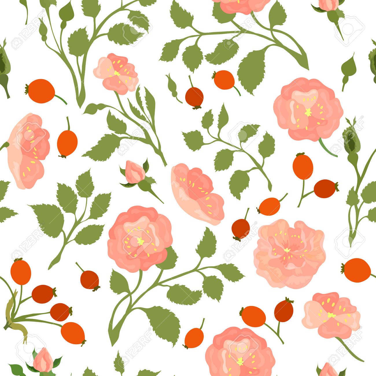 Seamless Pattern with Colored Dog-Rose. Twigs, Flower Heads, Fruits and Leaves Placed Chaotically on White Backdrop. Ideal for Magazine, Recipe book, Poster, Card, Menu cover etc. - 166149141
