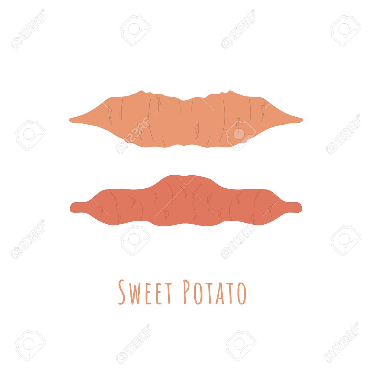 Two whole sweet potatos isolated on white and made in flat style. No outlined Symmetrical shapes filled with color only. Colorful vector illustration for product design, web and print usage. - 167239110