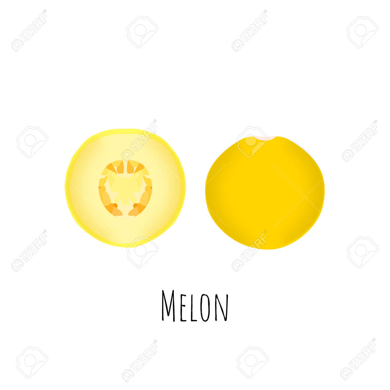 Whole and halved melon fruit isolated on white background. Vibrant yellow melon with seeds. Flat vector with shadows. - 168336297