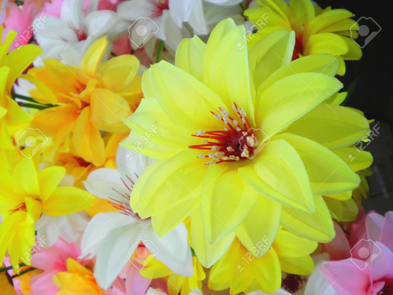 Fresh Bunch Of Beautiful Variety Yellow Flower Stock Photo