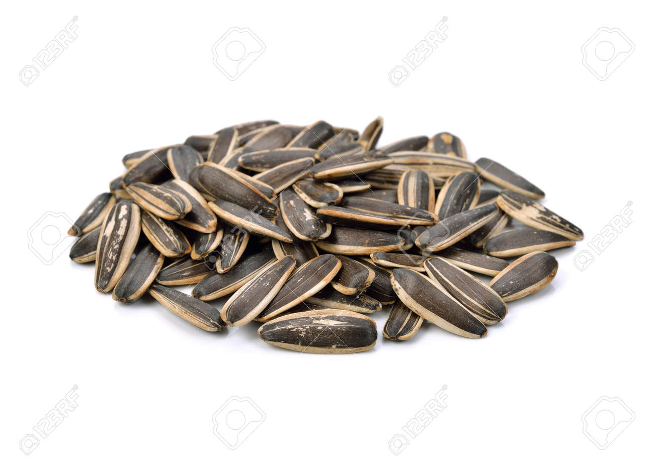 Sunflower seeds isolated on white background - 169847561