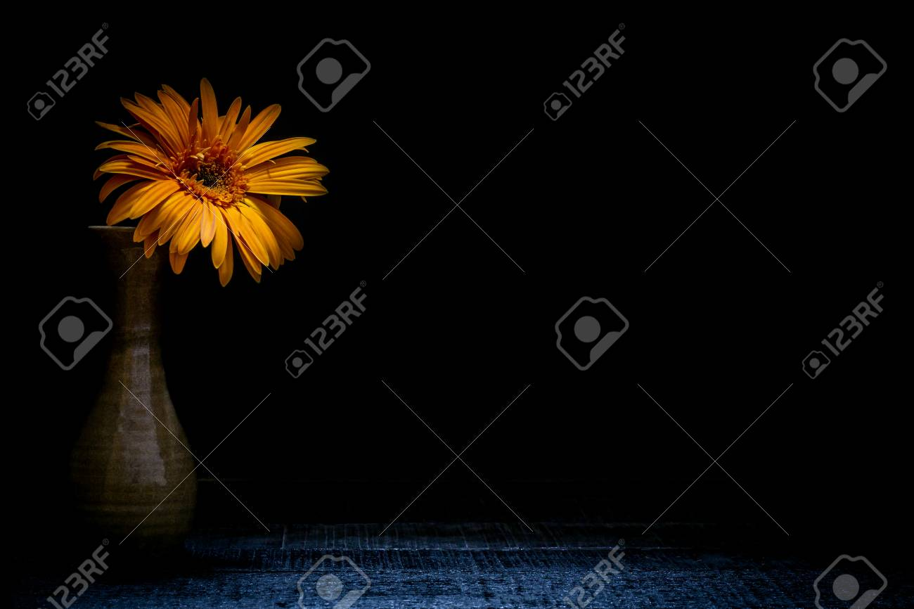 Still Life Vase With Flowers Black Backgroundflower Background