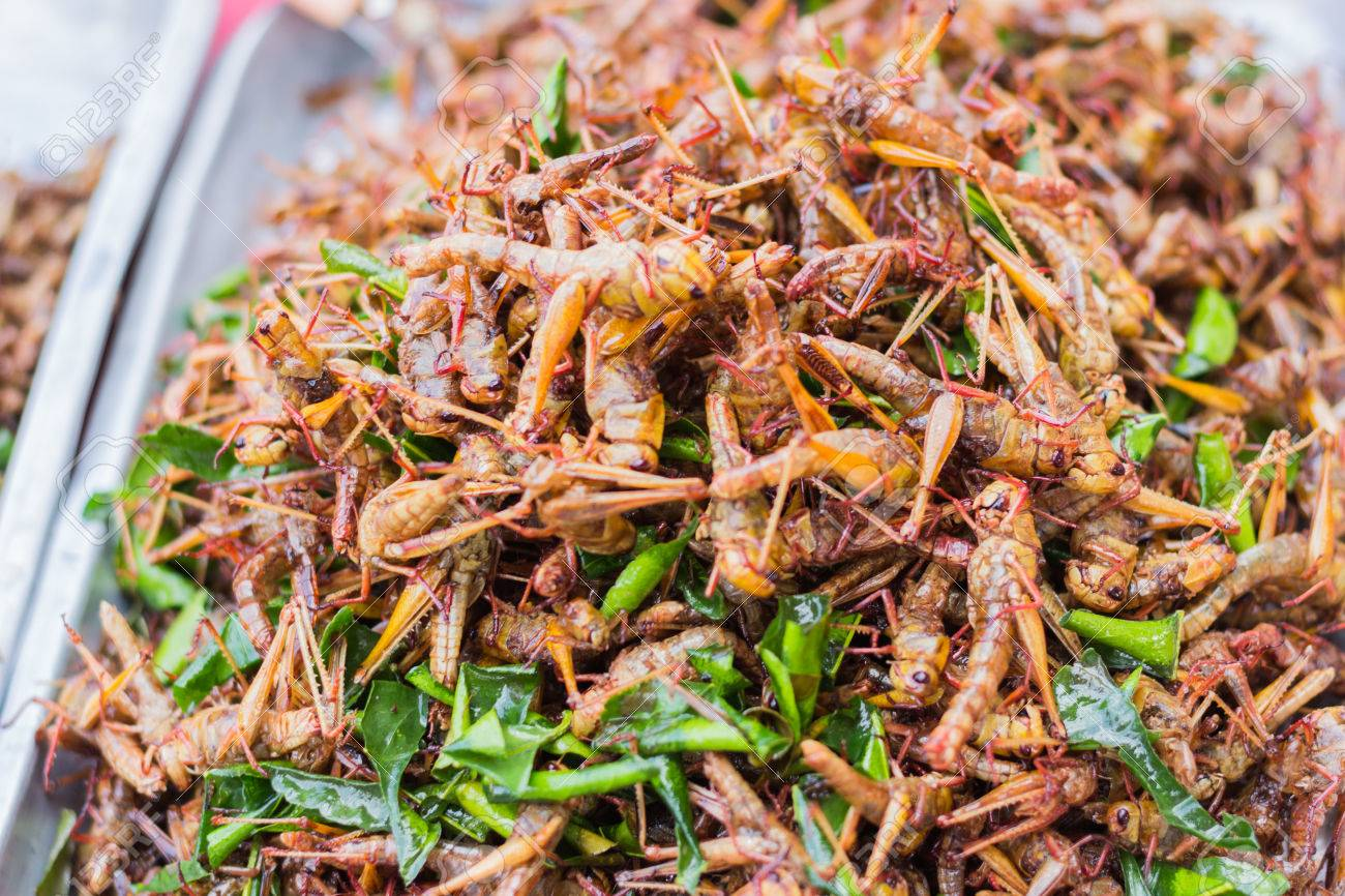 Fried Worms: Fried Grasshoppers At Bangkok , Thailand Stock Photo How To Eat  Fried Worms