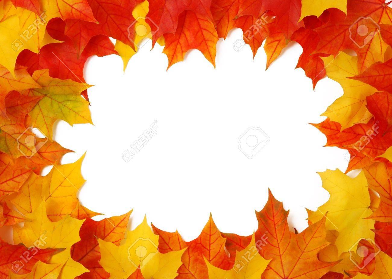 Fall leaves frame Stock Photo - 10571728