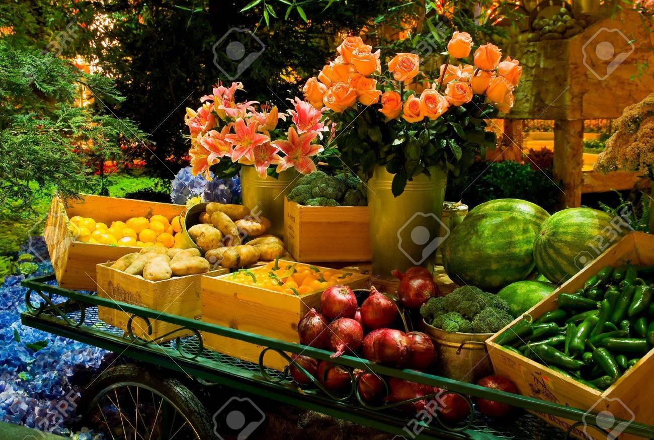Fruits and Vegetables on the table  Stock Photo - 13022318