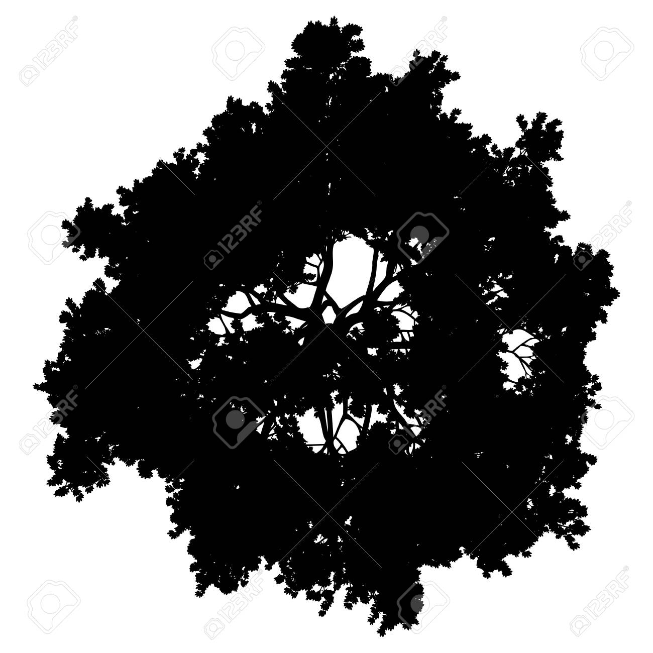 Tree top silhouette isolated - black simple detailed - vector illustration - 126008018