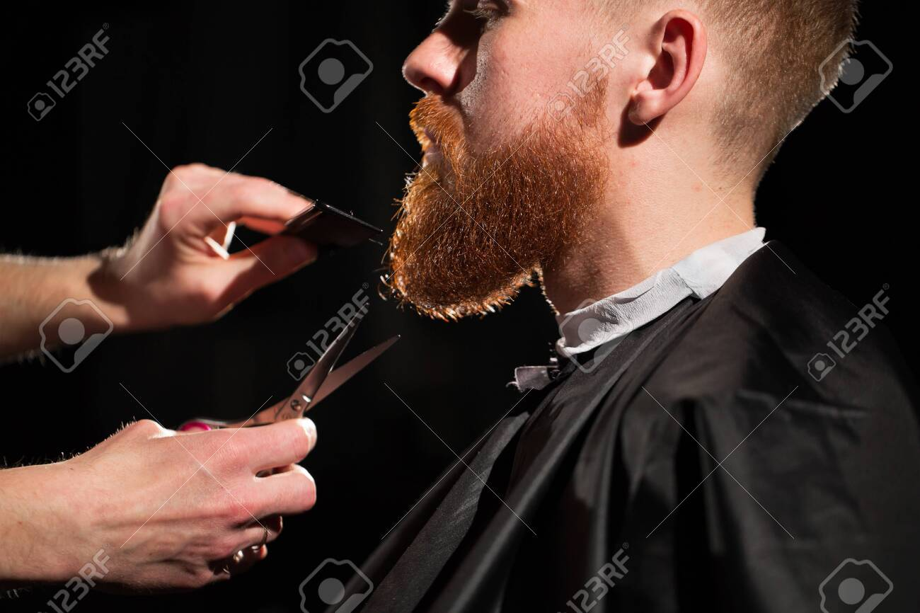 Master cuts hair and beard in the Barber shop. Hairdresser makes hairstyle using scissors and a metal comb - 143694807