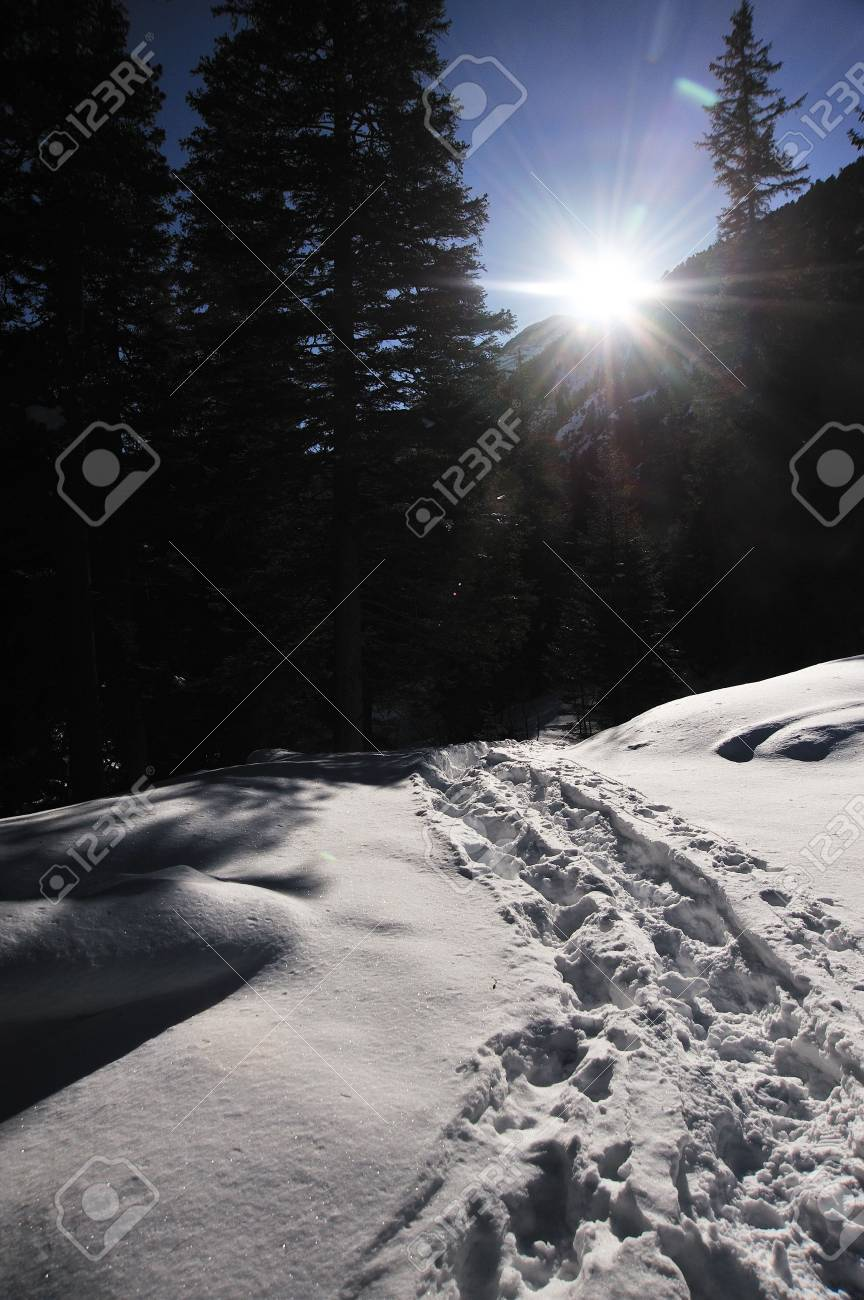 wildkogel Stock Photo - 5802135