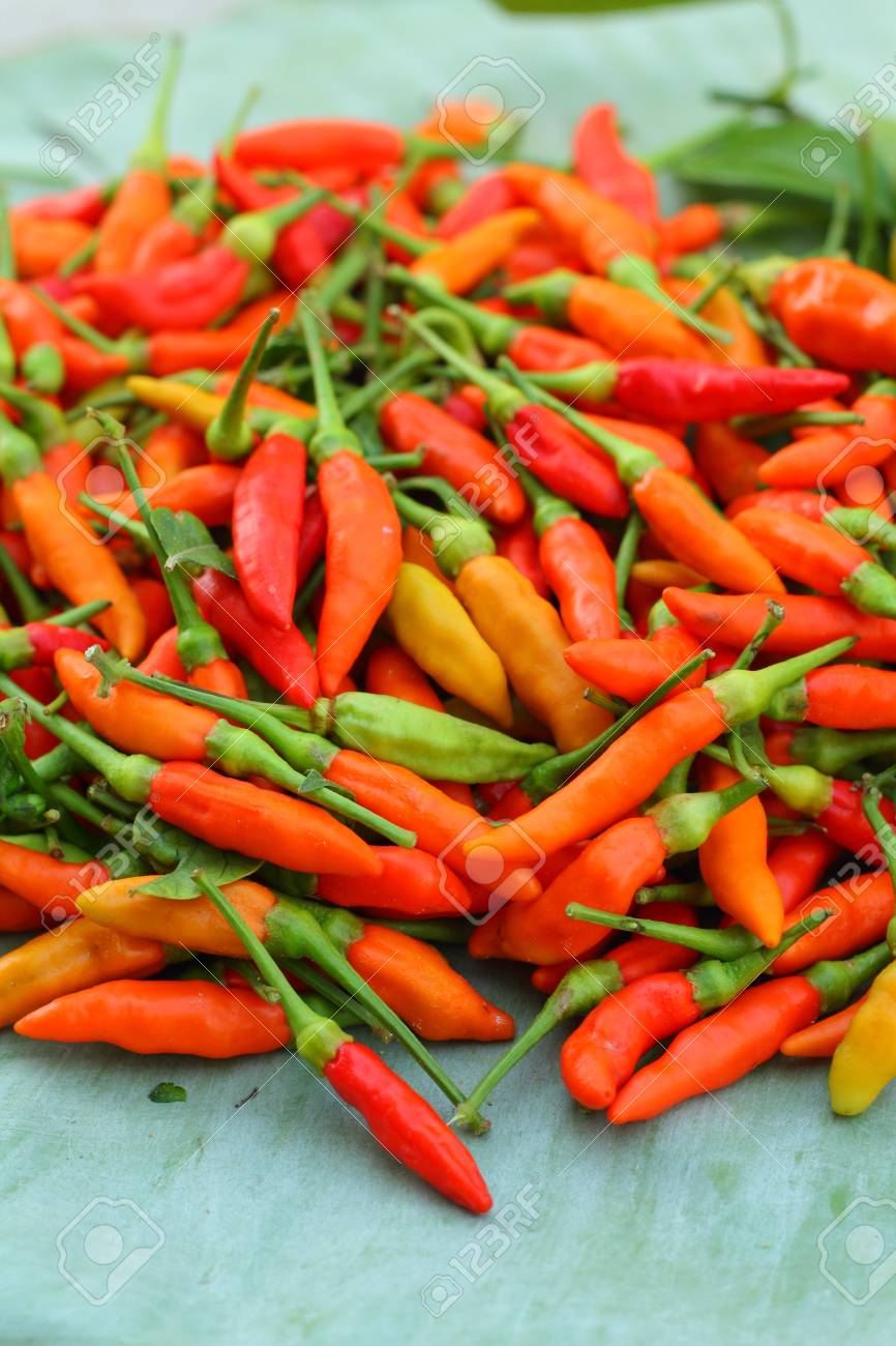 Fresh chilli - red hot peppers Stock Photo - 18452888