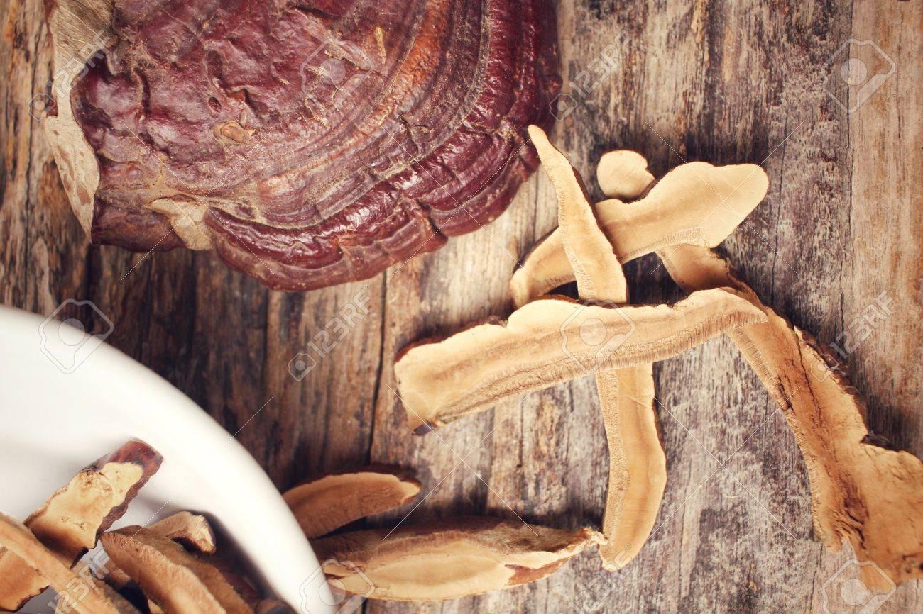 Ganoderma lucidum - Ling zhi mushroom. Standard-Bild - 44959253