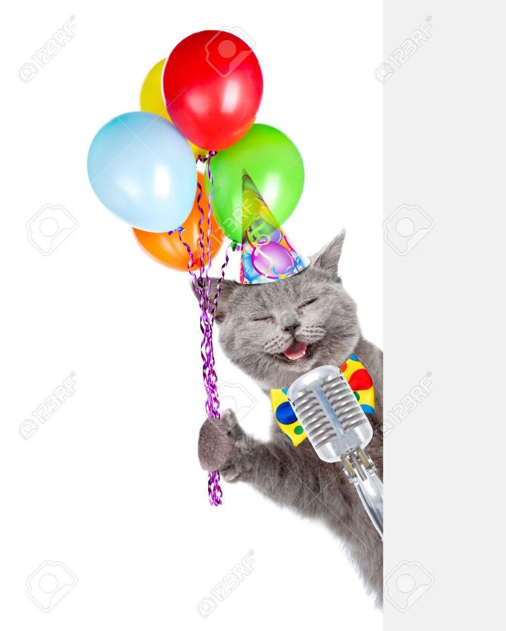 Kat In Verjaardag Hoed Houdt Retro Microfoon Met Ballonnen