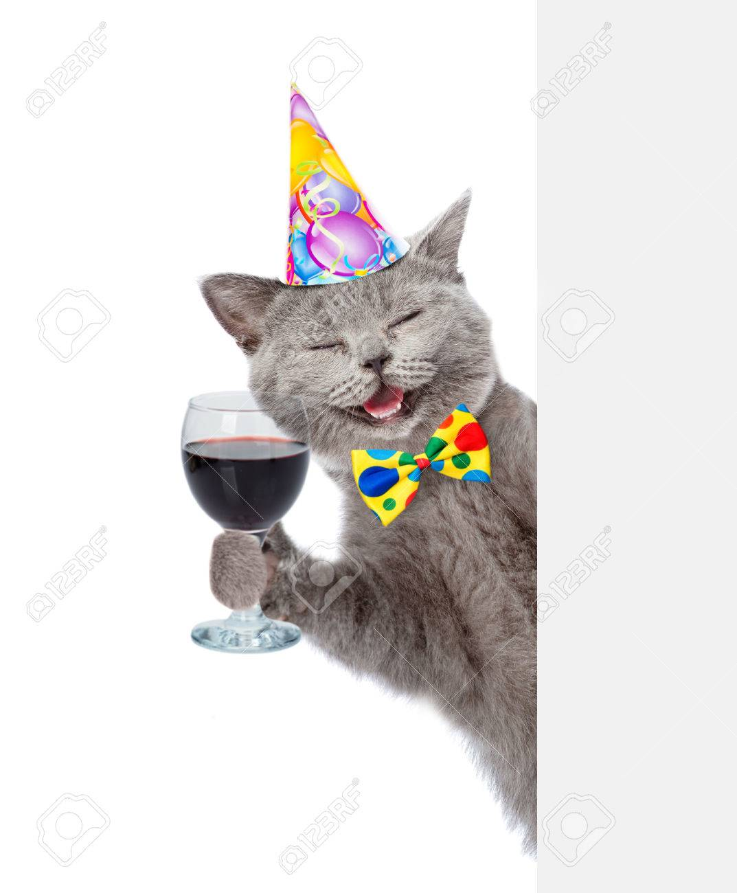 Happy Cat In Birthday Hat Holding Wineglass Isolated On White Background Stock Photo