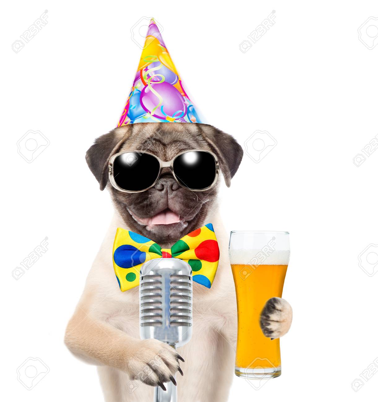 Funny Puppy In Birthday Hat And Sunglasses Holding Light Beer Retro Microphone Isolated On