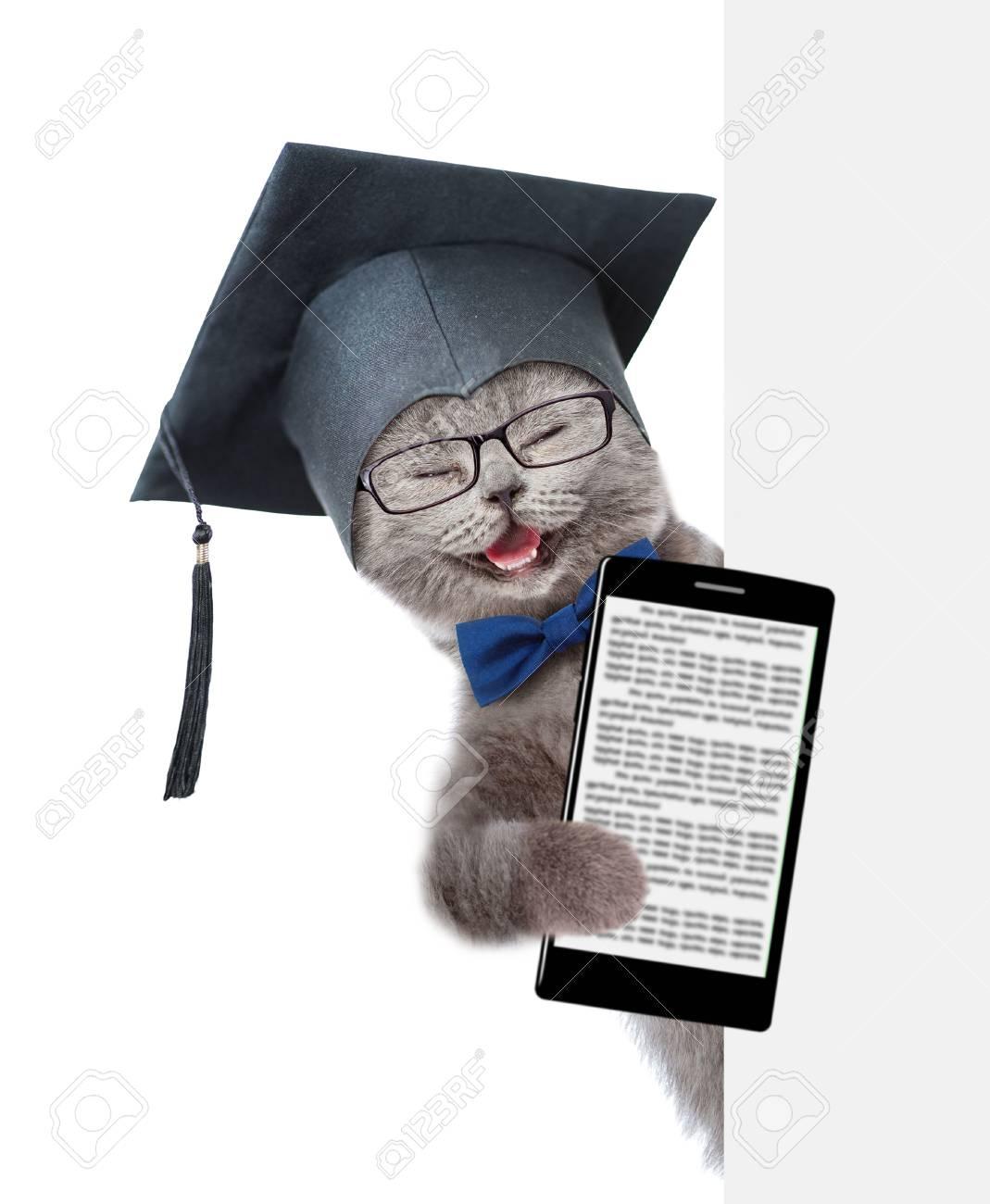 Katze Mit Schwarzem Abschlusshut Und Mit Dem Smartphone Der Hinter