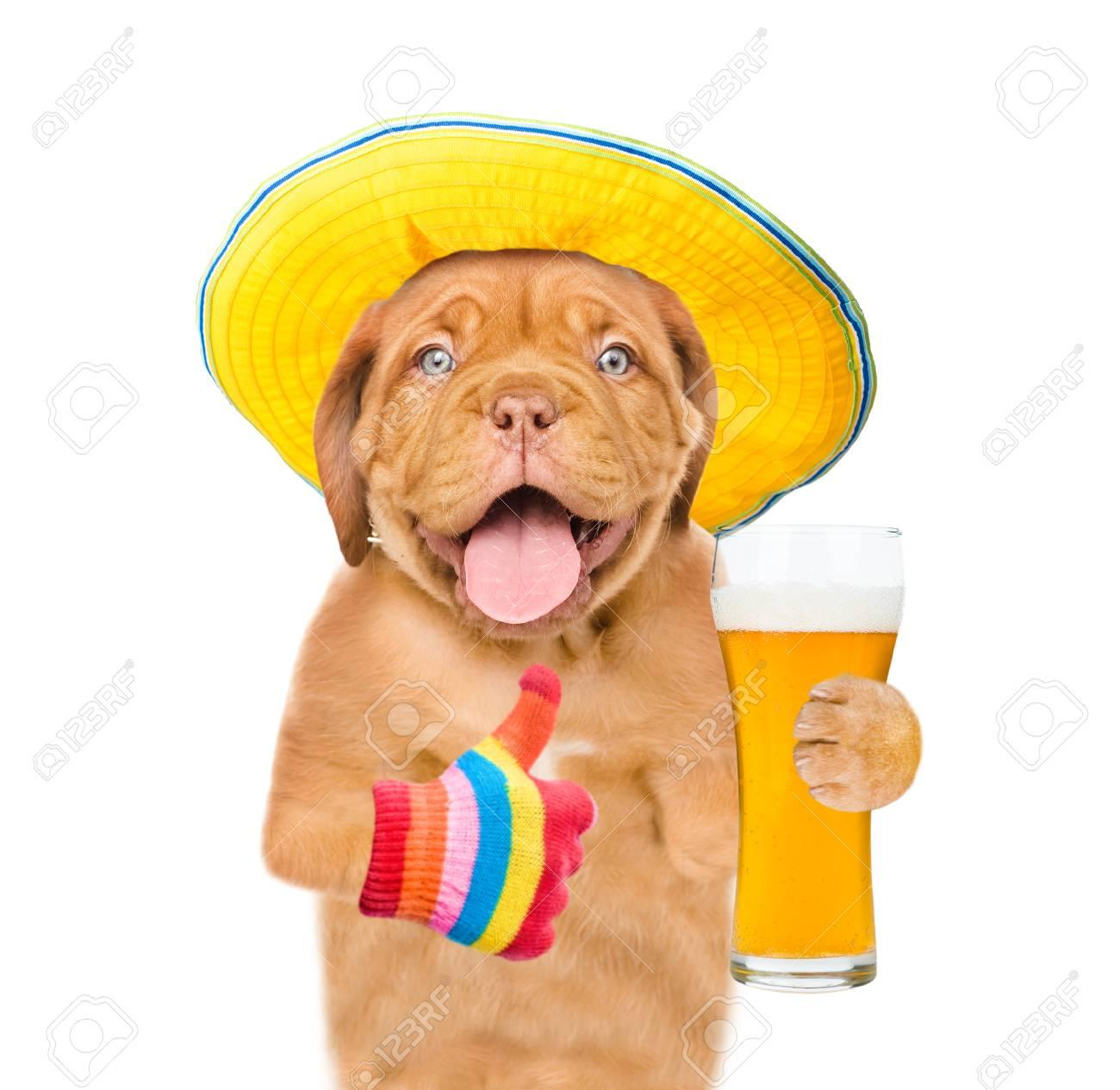 Magnifiek Grappige Puppy In Zomerhoedje Met Een Glas Bier Dat Duimen Laat @YA33
