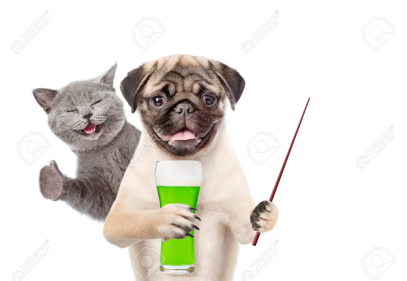 St Patricks Day Funny Kitten And Puppy With A Glass Of Green