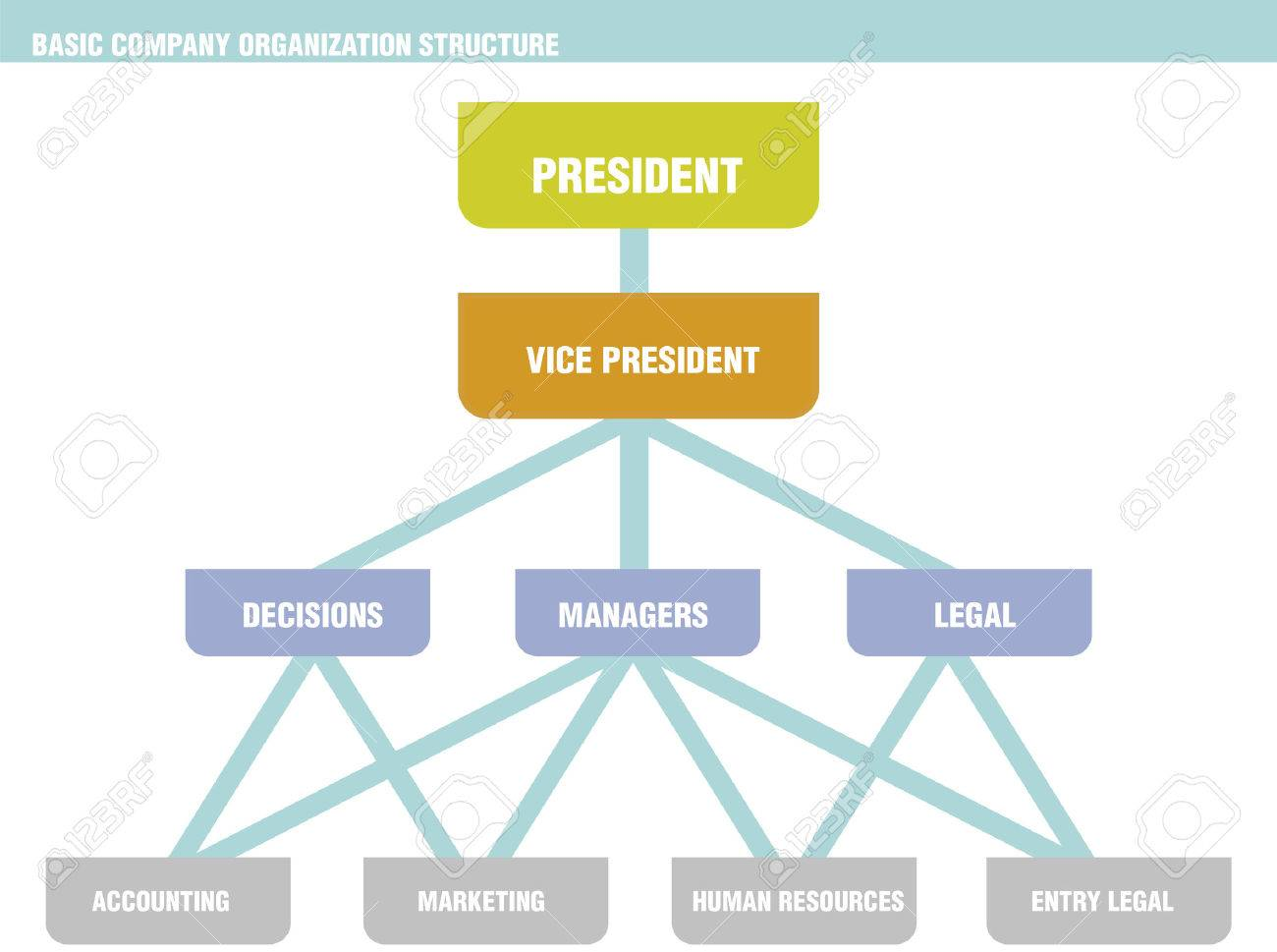 hewlett packard organizational structure