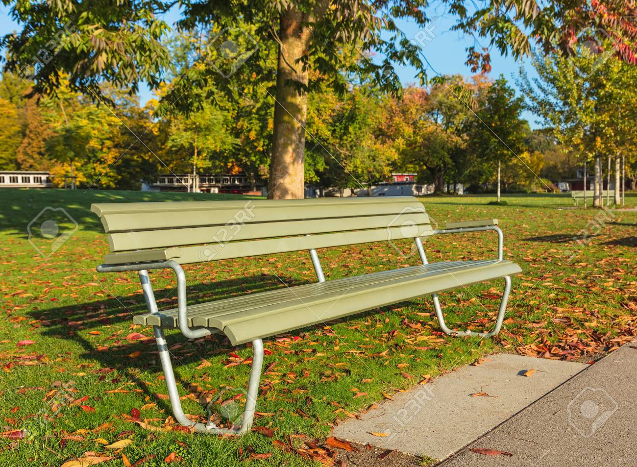 A Bench In A Park In Autumn Shallow Depth Of Field Picture With