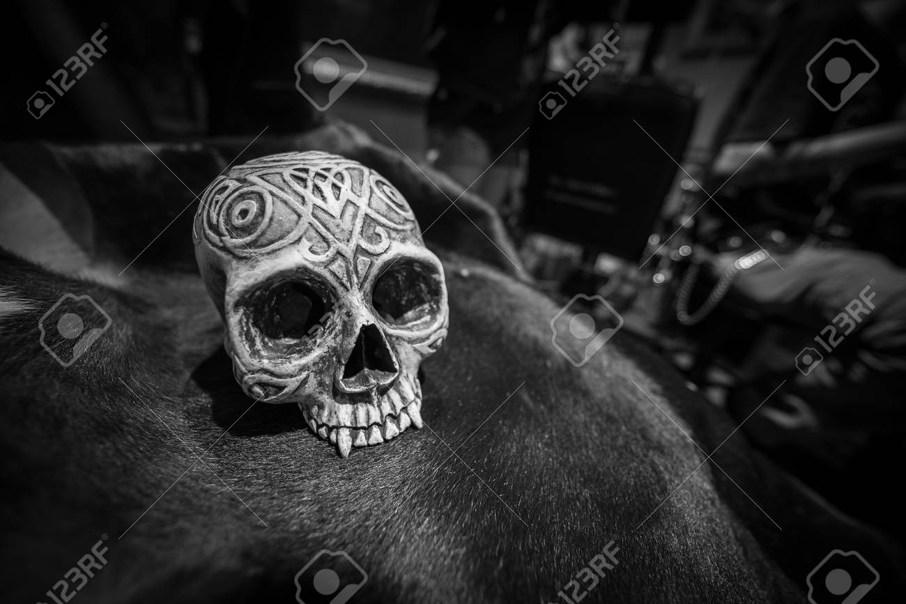 Black and white human skull model on cow skin texture