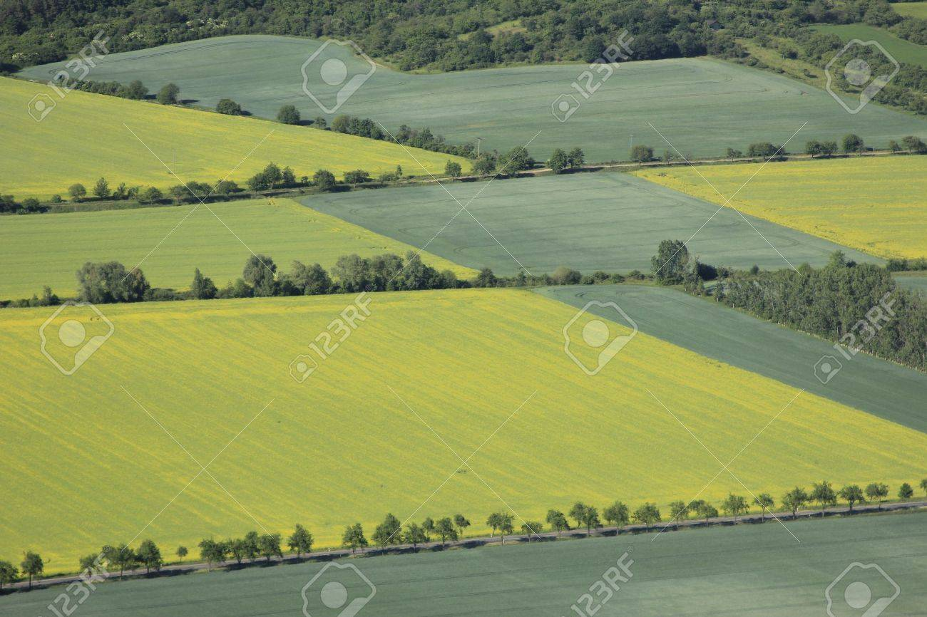 aerial view of arable land Stock Photo - 11317016