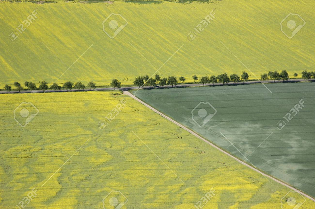 aerial view of arable land Stock Photo - 11317020