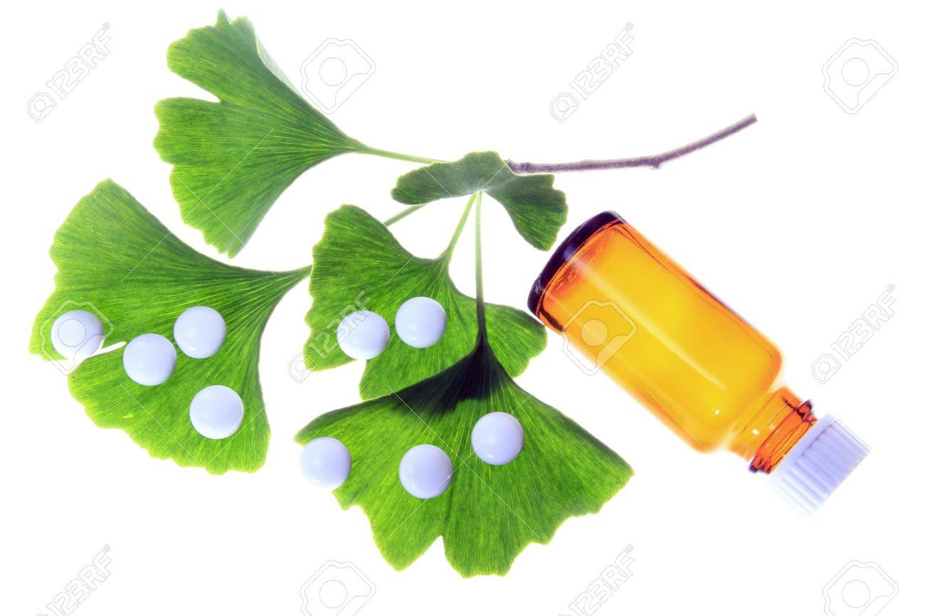 Leaves of the ginkgo tree and coated tablets for oral use symbolic leaves of the ginkgo tree and coated tablets for oral use symbolic stock photo 14163189 biocorpaavc Gallery