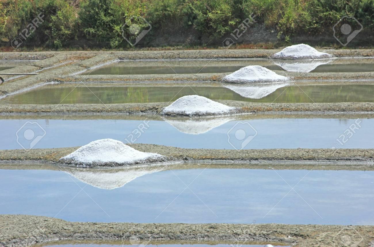 Production Of Sea Salt Fleur De Sel In The Salt Fields Of