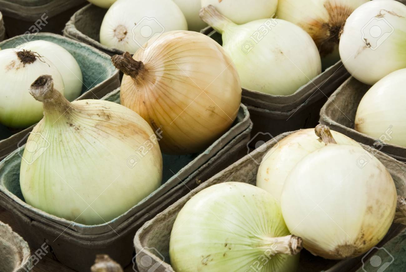 fresh vegetables at a farmers market in Minneapolis Stock Photo - 5597062