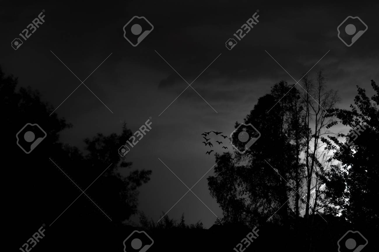 Lightning, Weather  Storms in night skies Stock Photo - 45306328