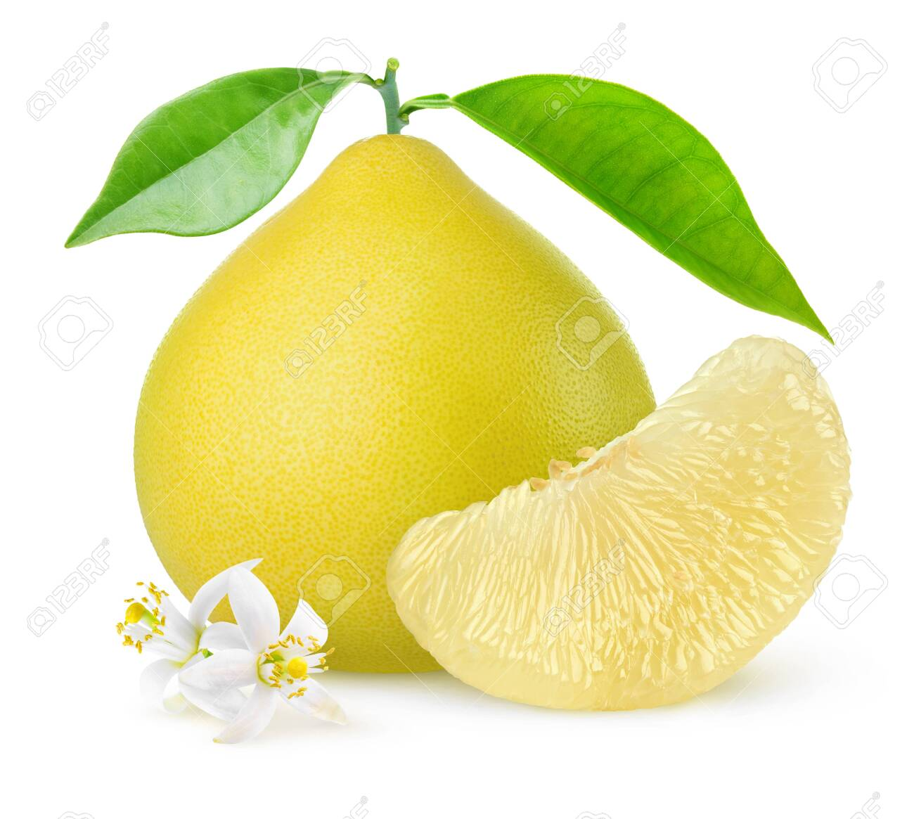 Isolated pomelo citrus fruit. One whole pomelo and a peeled segment with leaves and flowers isolated on white background - 123930440