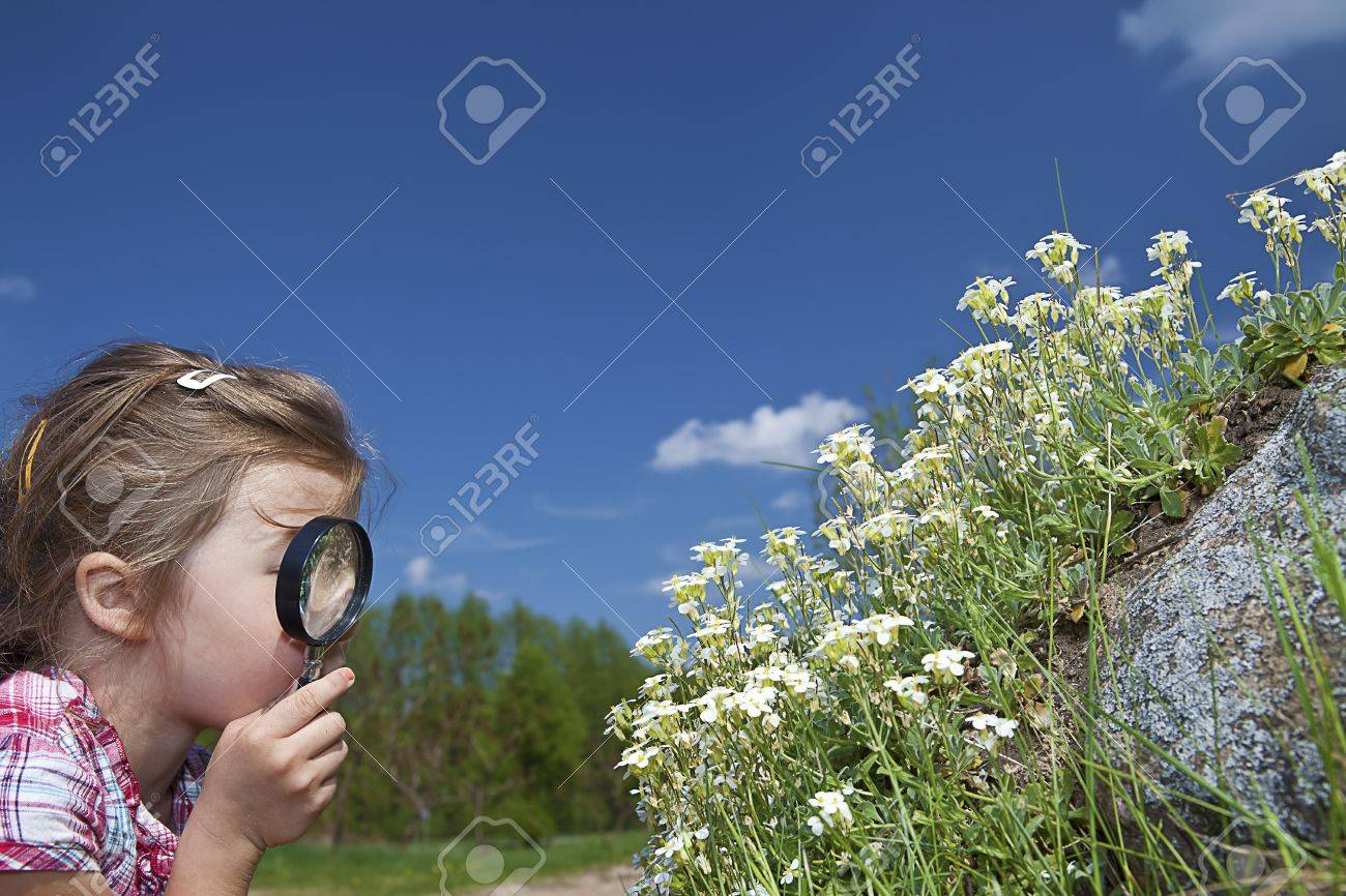 little girl with magnifying glass checking flowers Stock Photo - 17541583