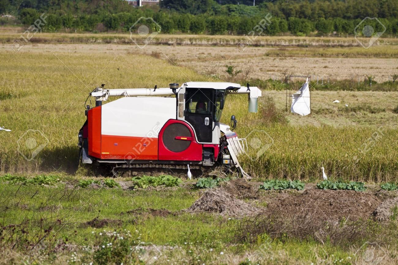 Farmer is working in rice farm with working machine, Taiwan Stock Photo - 17100596
