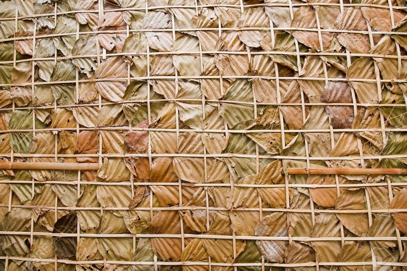 leaf wall texture is natural wall Stock Photo - 11953602