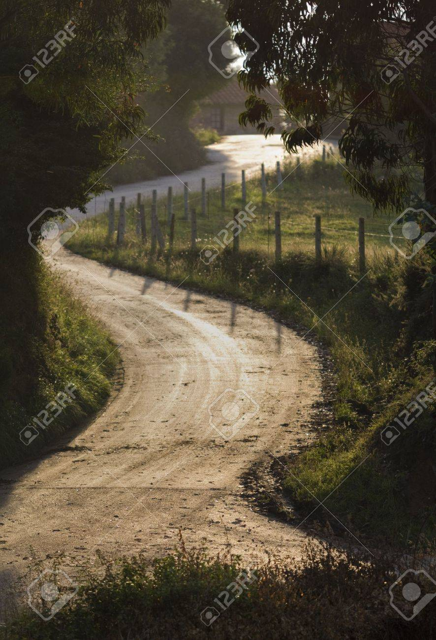 Country Road Winding in Backlight. Stock Photo - 11260453