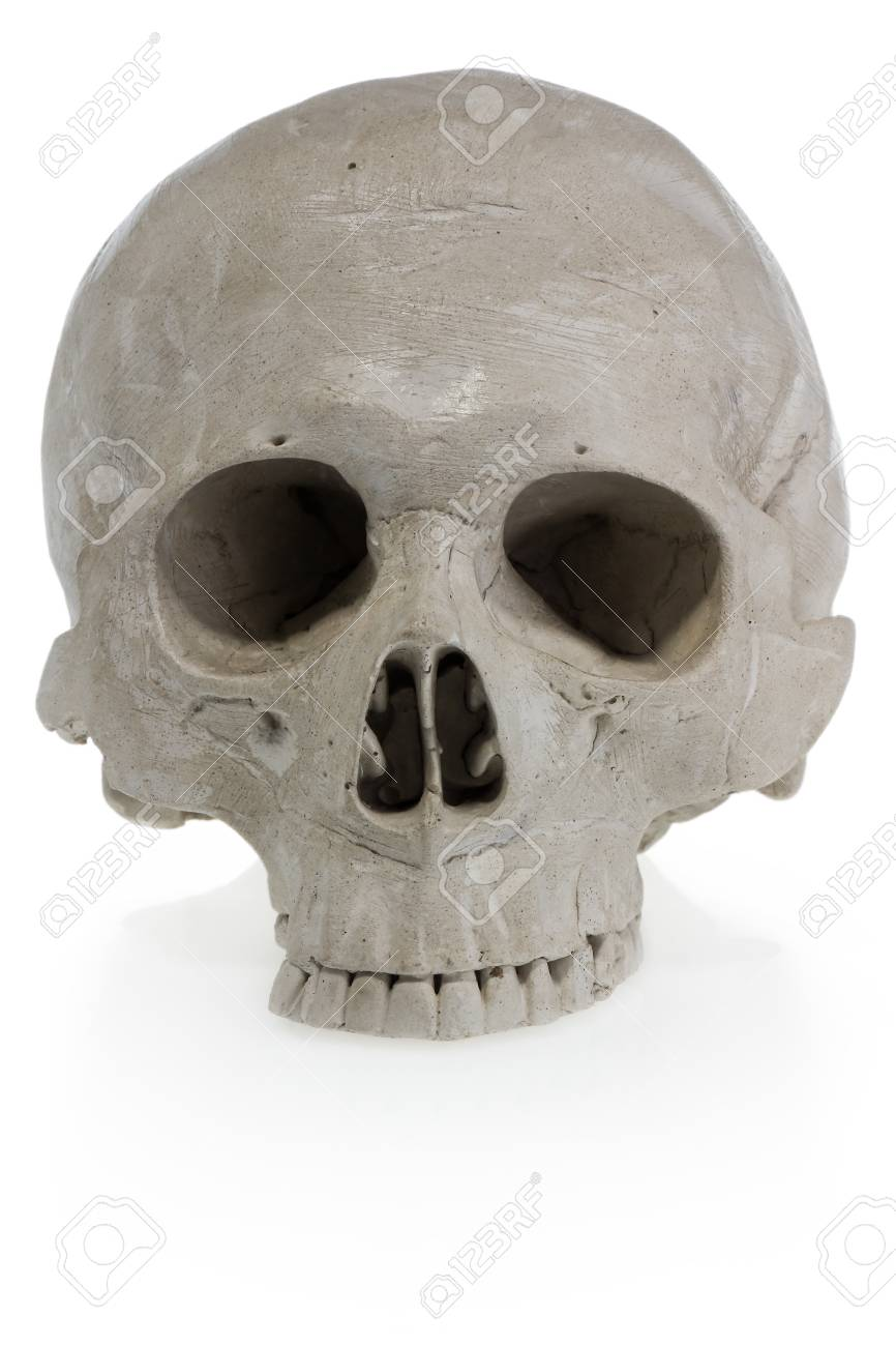 Halloween Human Skull Scary Skeleton Head Party Decorations