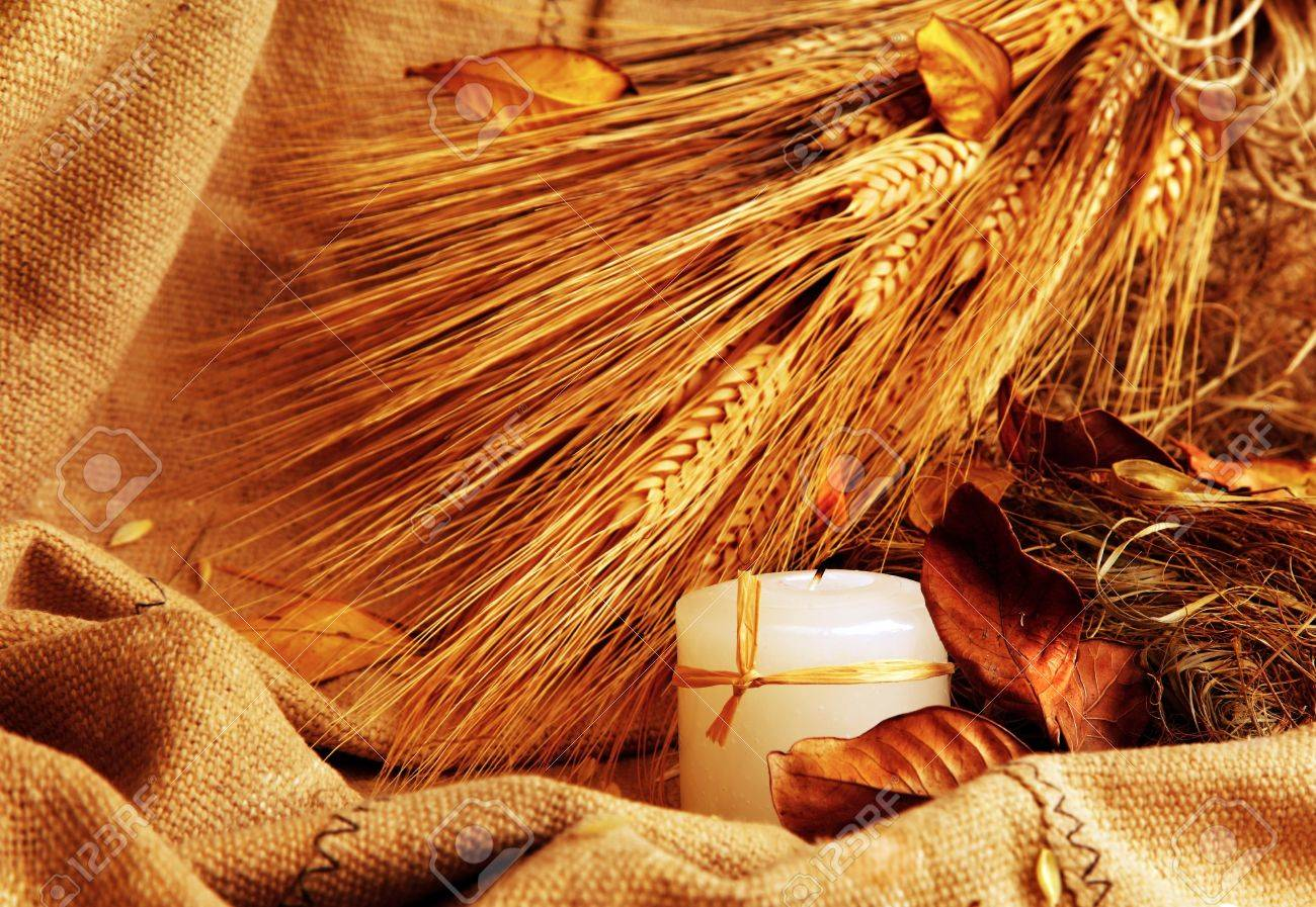 Autumn wheat background with leaves & candle Stock Photo - 7753405