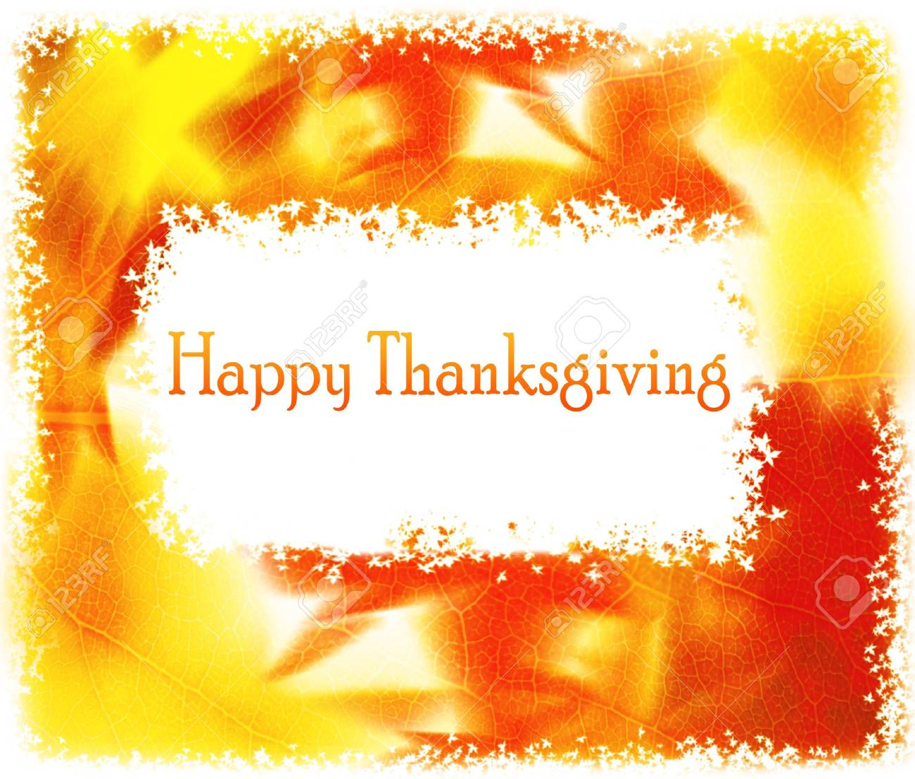Thanksgiving holiday greeting card with orange gourds Stock Photo - 8108058