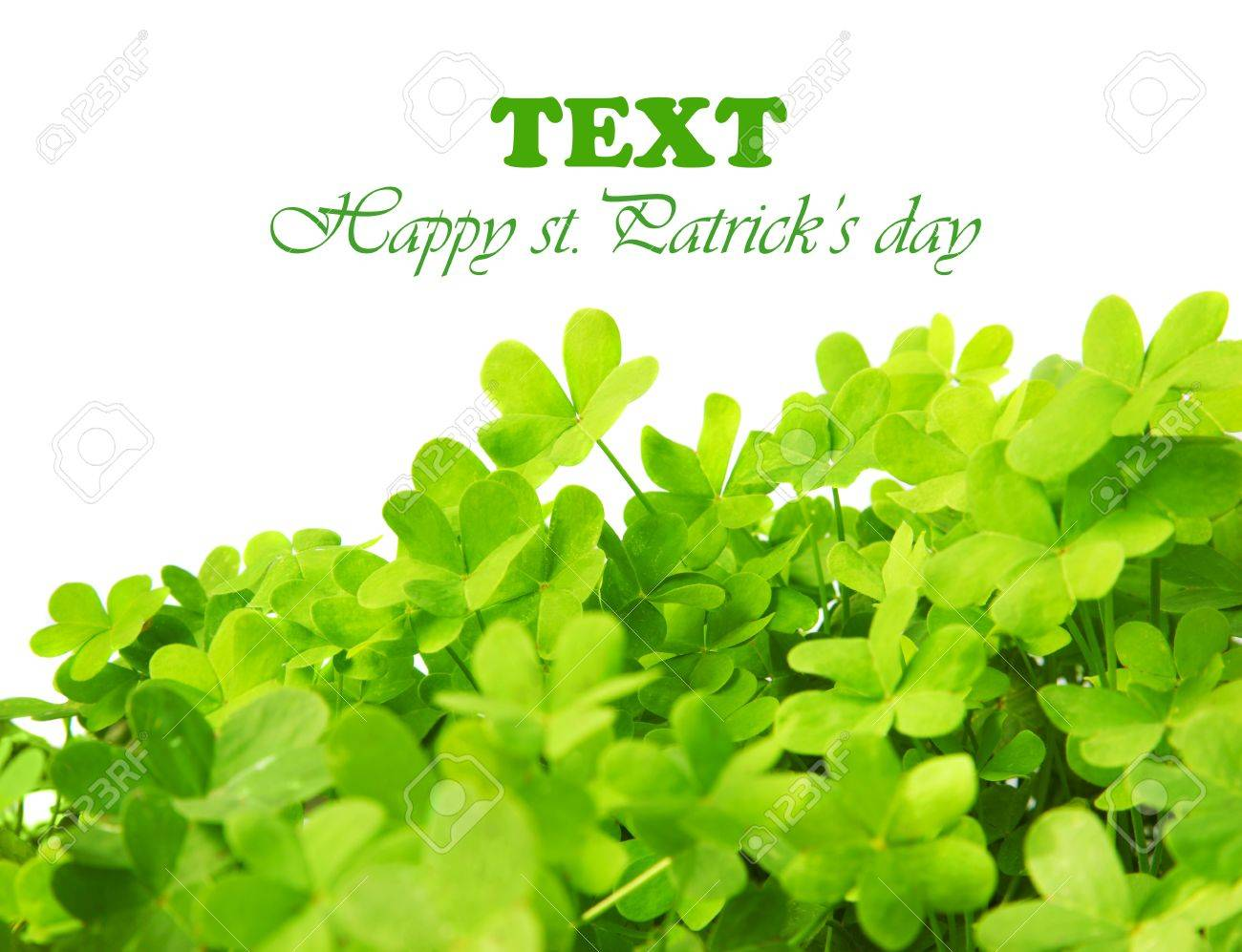 Green clover holiday border, st.Patrick's day decoration isolated on white background with text space Stock Photo - 8968118