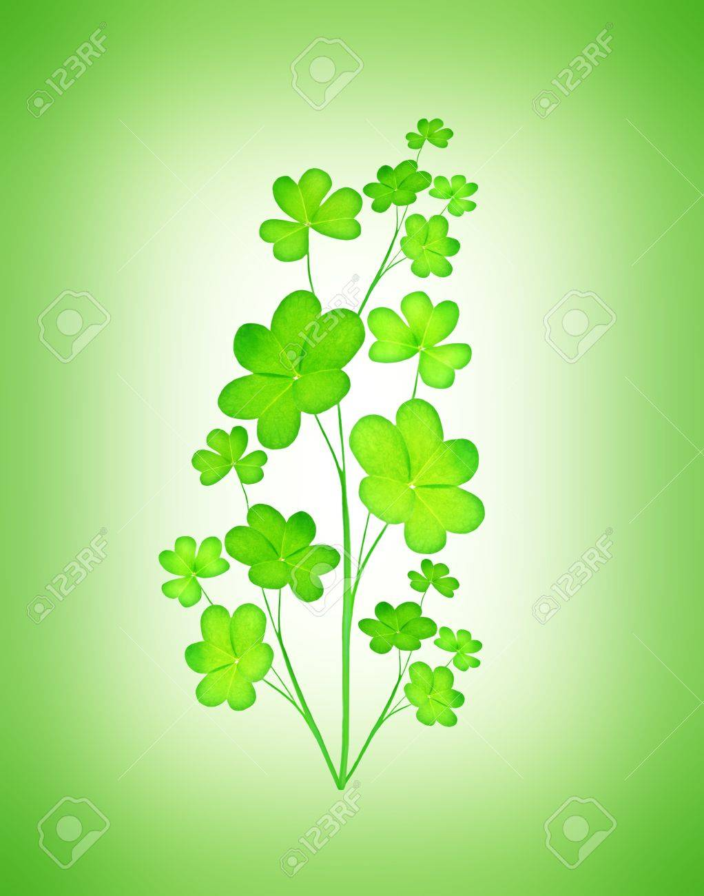 Green clover holiday plant, st.Patrick's day decoration isolated on green background with text space Stock Photo - 8980604