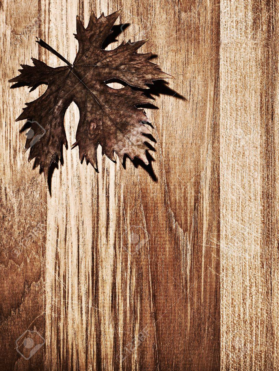 Autumn leaf  border over natural wood background, old dry leaf shape, nature at fall Stock Photo - 10942199
