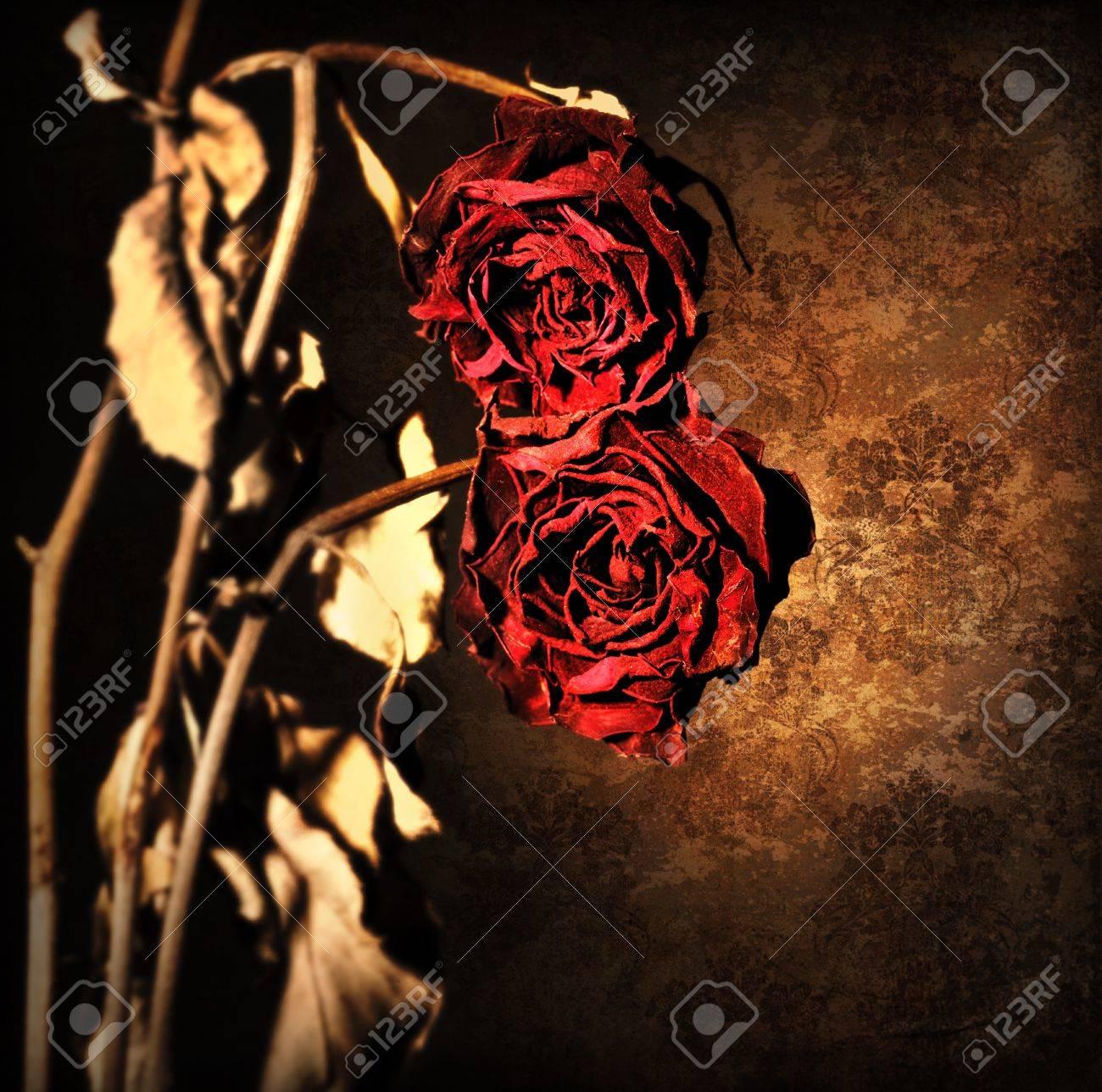 グランジしおれたバラ暗い古い壁紙背景上 花は赤い枠と乾燥花 レトロ