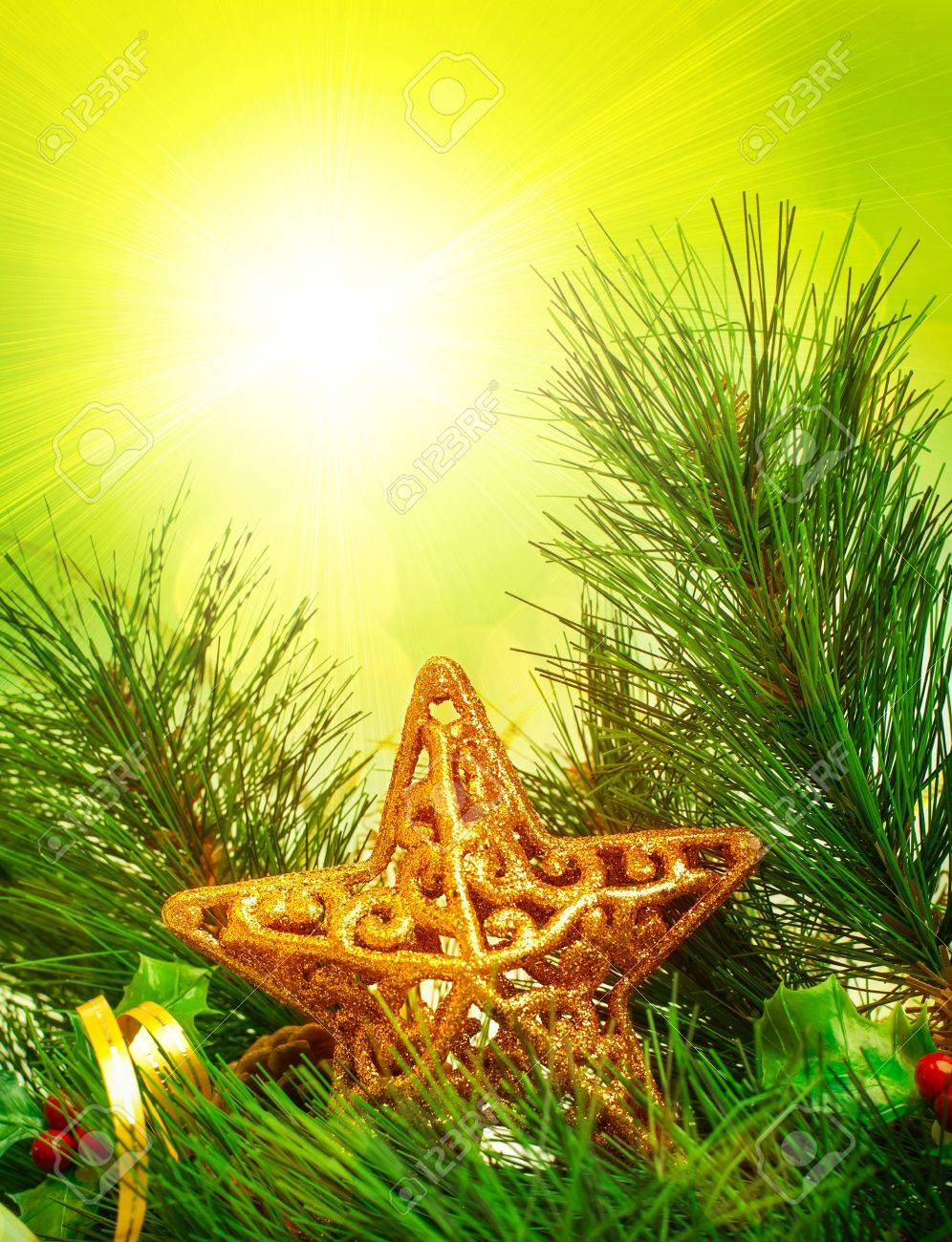 picture of christmastime decorative border branch of christmas tree decorated with golden star and ribbon