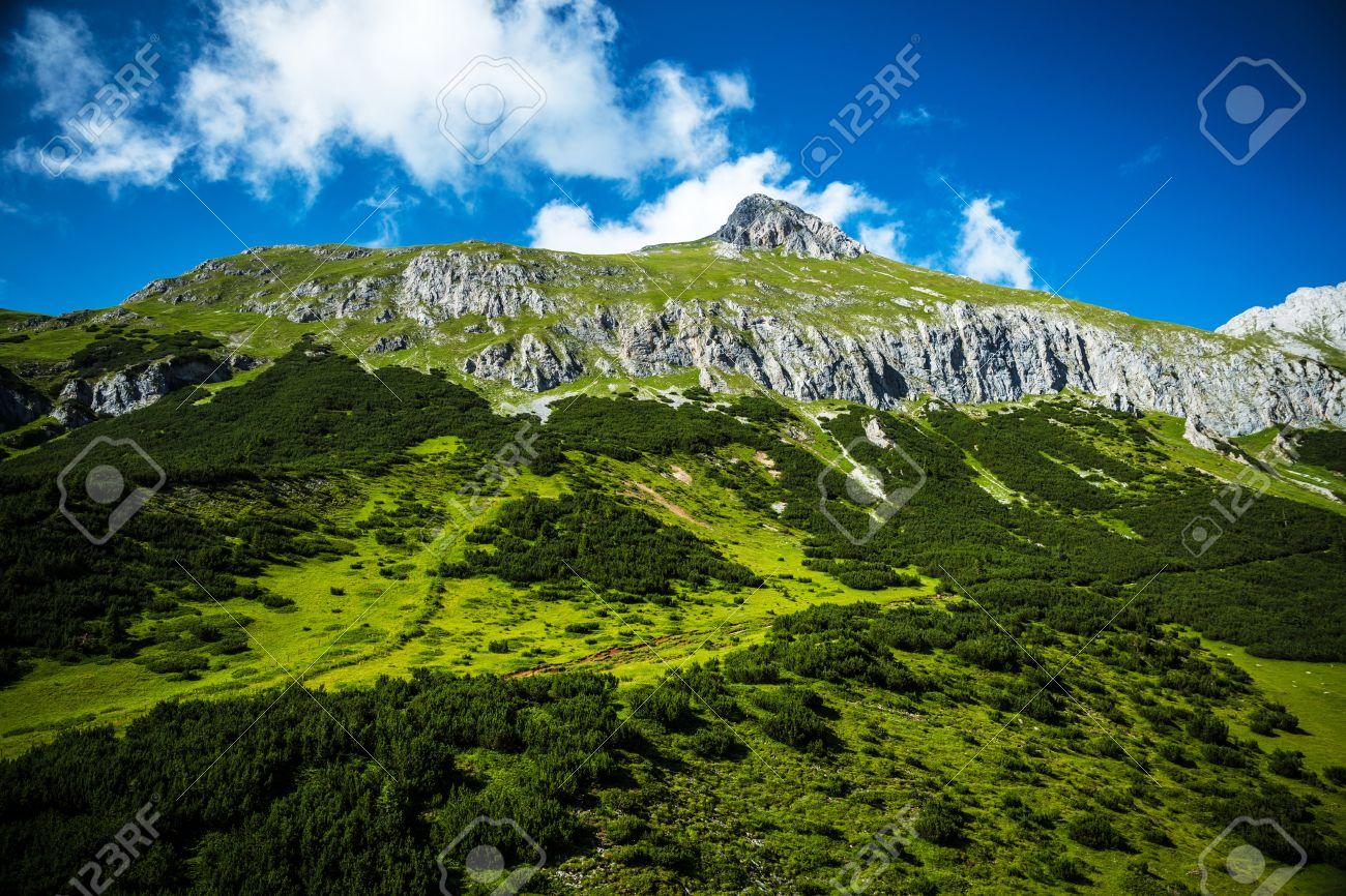 Beautiful Mountain Fresh Green Mountainous Forest Gorgeous Stock