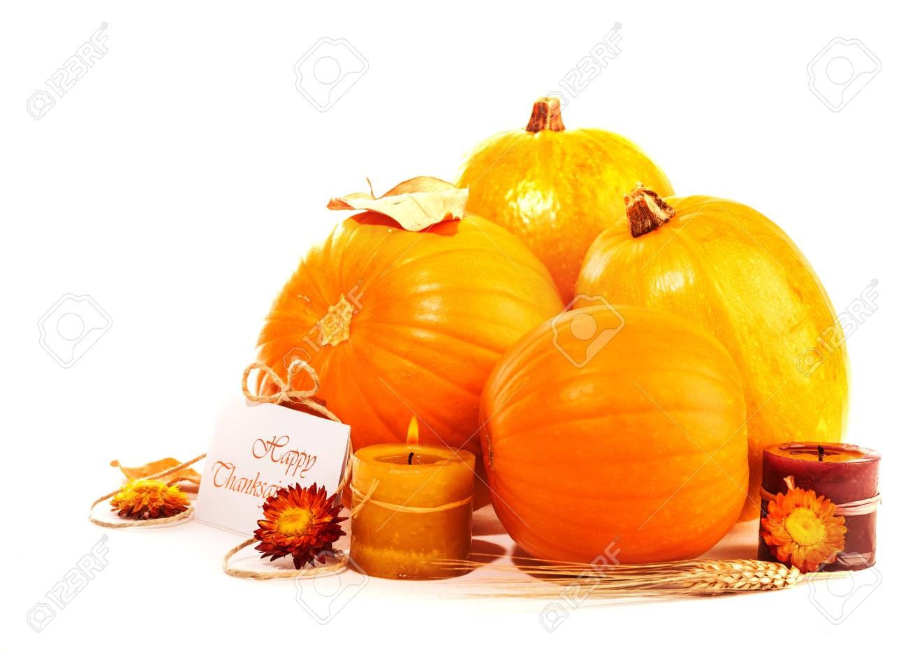 Happy Thanksgiving holiday, traditional gourd decoration isolated on white background, festive postcard, autumnal harvest season Stock Photo - 23015086