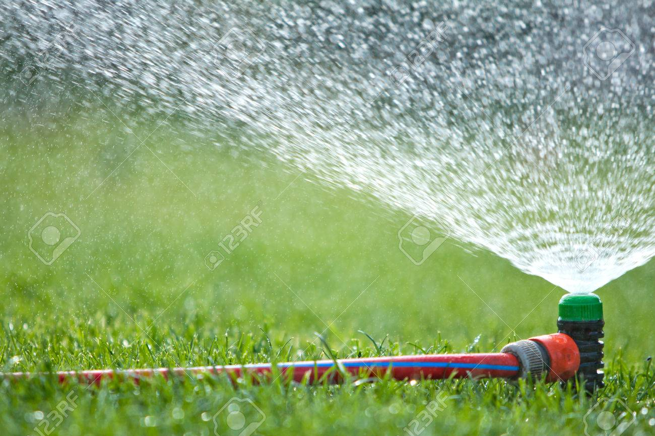 Summer Water Sprinkler In Garden Close Up