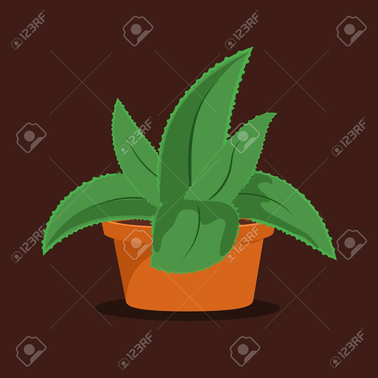 Aloe Vera Plant In Pot On Brown Background Succulent Plant Royalty Free Cliparts Vectors And Stock Illustration Image 100151012