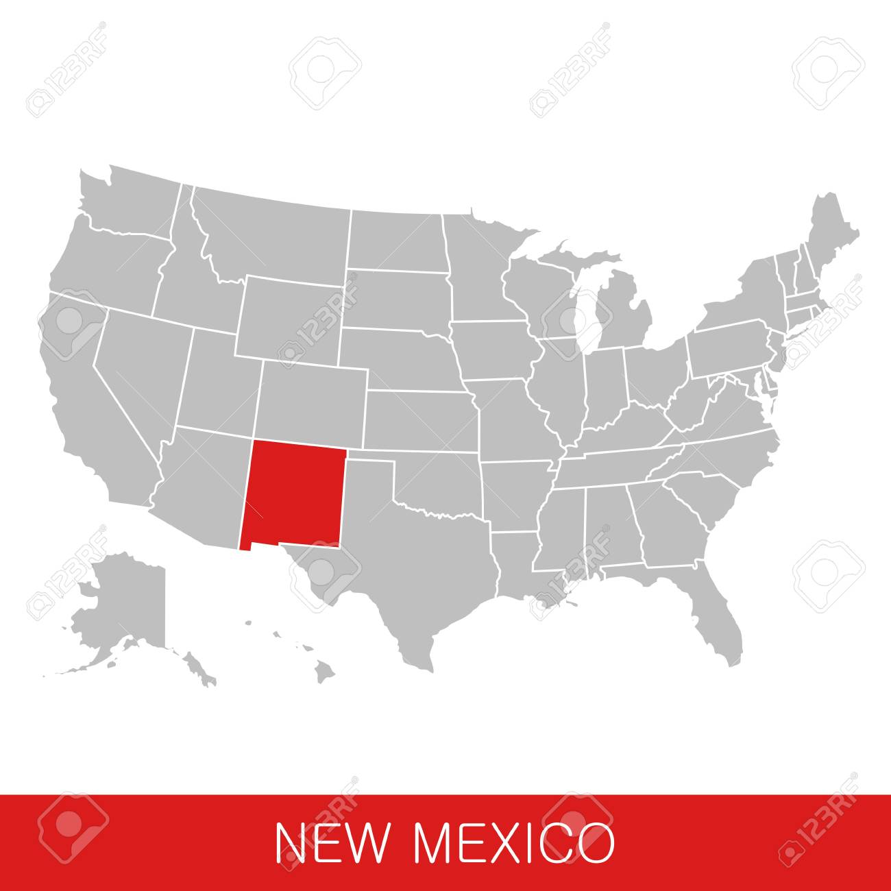 United States of America with the State of New Mexico selected...