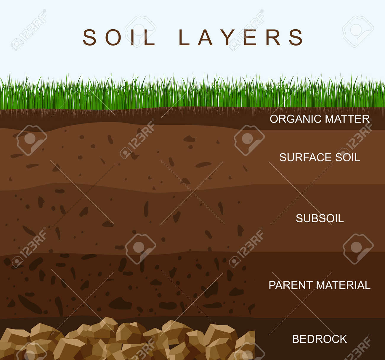 Soil layers diagram earth texture, stones. Ground with green grass on top. Mineral particles, sand, humus and stones, natural fertilizer. Geology infographics. Education for kids. Vector illustration - 158628435
