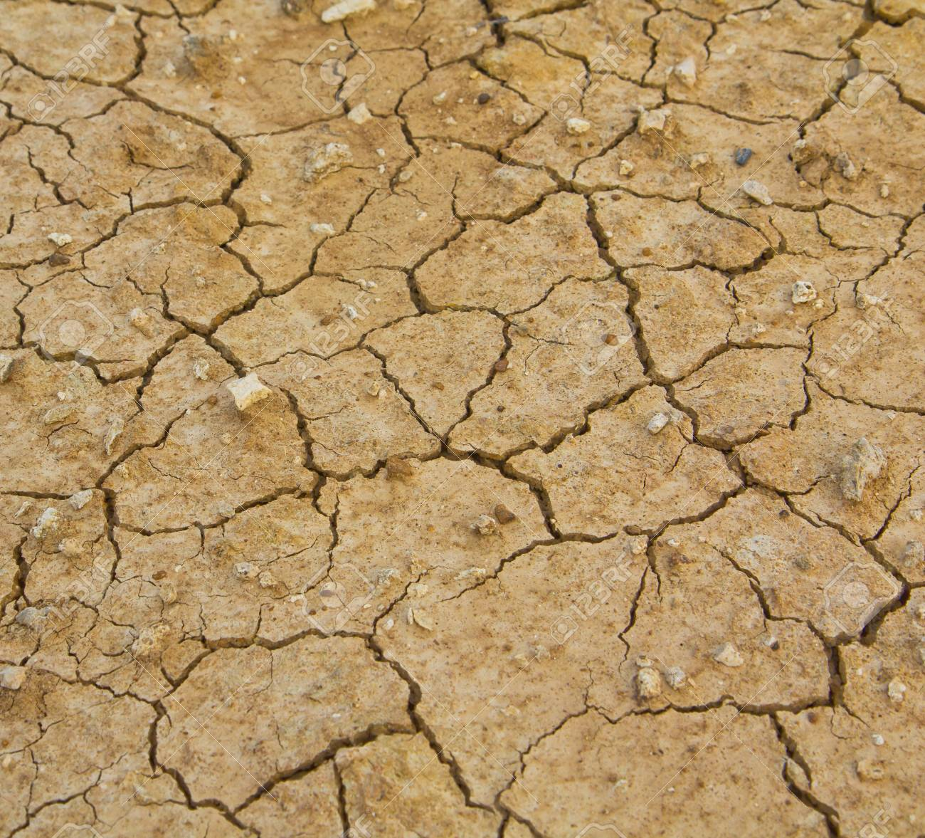 background Dry soil Stock Photo - 13699715